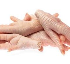 Answers Fermented Raw Chicken Feet